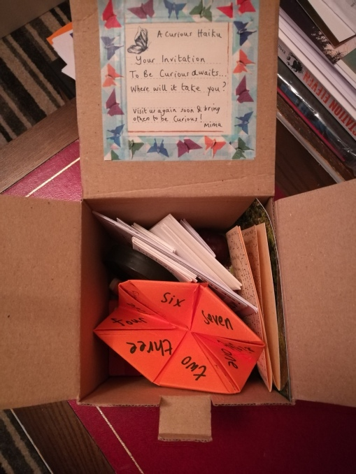 photo description: a cardboard box named An Invitation to be Curious filled with intriguing things