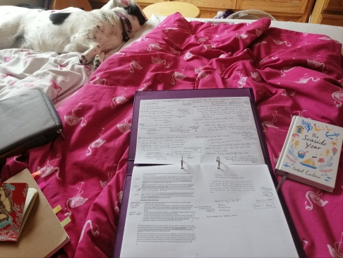 photo description: folder of printed notes covered in handwritten ideas which is on a duvet with a sleeping stretched out dog.